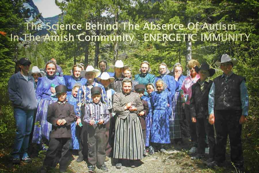 The Science Behind The Absence Of Autism In The Amish Community : Energetic Immunity