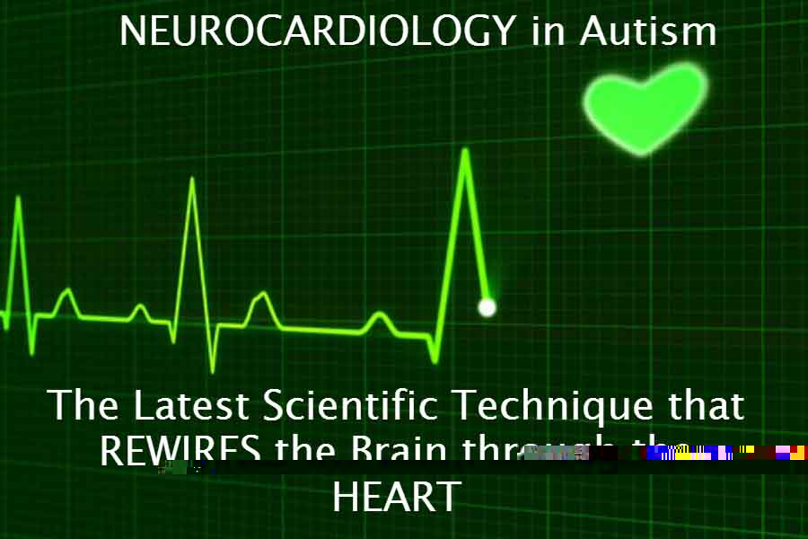 Neurocardiology in autism