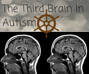 The Third Brain In Autism : Opening The Doors To The Solution In Autism
