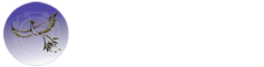 Authentic Autism Solutions